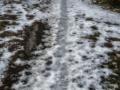 winterways6